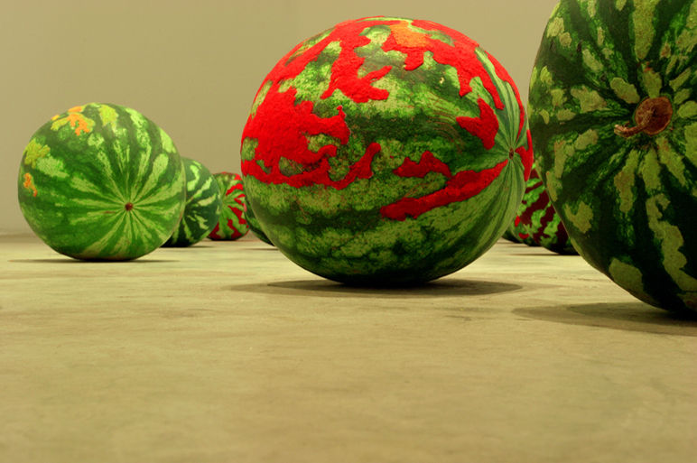 Martha Dimitropoulou Landscape, 2005 Mixed media dimensions variable